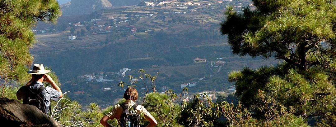 The Top Hiking Trails in La Palma