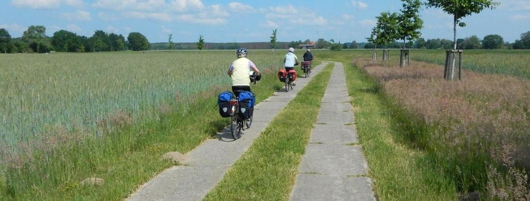 Die 10 Schonsten Fahrrad Touren In Brandenburg