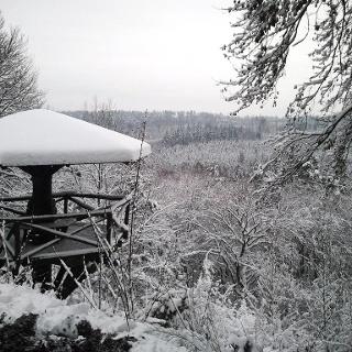 Aussichtspunkt Falkenkopf im Winter