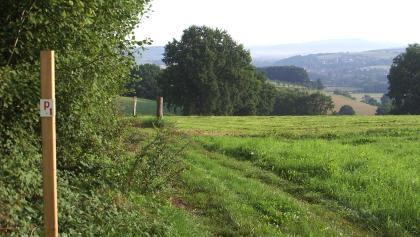 Panorama am Müncheberg