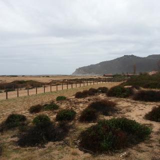 la petite dune