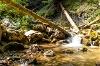 Die Reichenbachklamm - @ Autor: Julian Knacker - © Quelle: Pfronten Tourismus