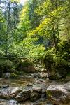 Wasser in der Reichenbachklamm - @ Autor: Julian Knacker - © Quelle: Pfronten Tourismus