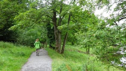 A trail en route