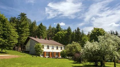A Borz-Alom Erdészeti Erdei Iskola
