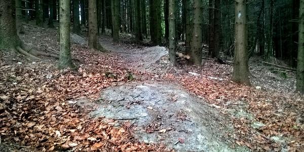 Der Siegener Flowtrail bietet gestaltete Wege, die jeder Biker nach seinen Fähigkeit fahren kann.