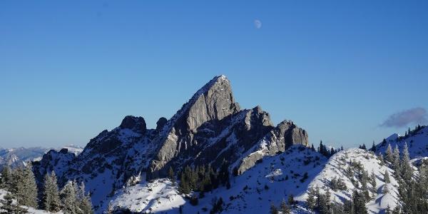 Blick auf die Ruchenköpfe (mittlerer Gipfel 1805 m)