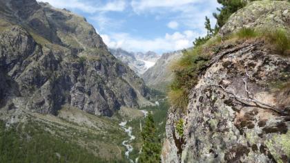 Der Glacier Blanc vom Wanderweg auf die Draye etwa am Ausstieg der Tour