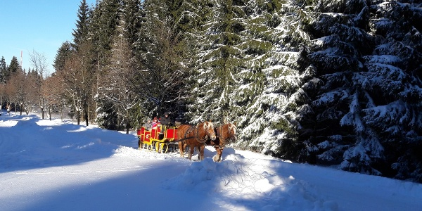 Winterlandschaft Schöneck