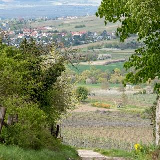 Wanderweg Westerberg