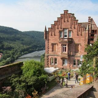 Einmal im Jahr gibt es auf der Burg einen Garten- und Pflanzenmarkt. Link: http://www.schloss-zwingenberg.de/termine.php