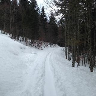 Weg 216 in Richtung Leistalm