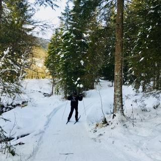 Langlaufen in Laßnitz bei Murau