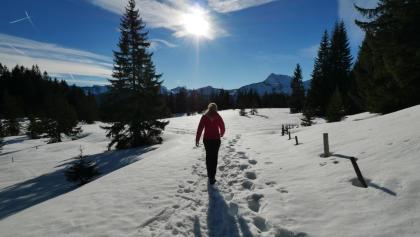 Winterwanderung rund um Zöblen