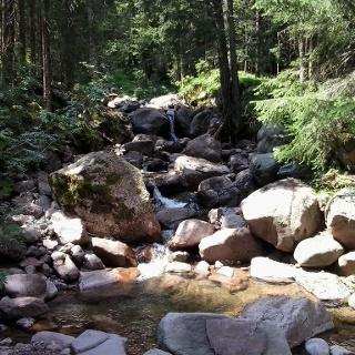 Oberlauf des Novella-Flusses