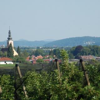 Aussicht in die Oststeiermark (c) TV St. Ruprecht