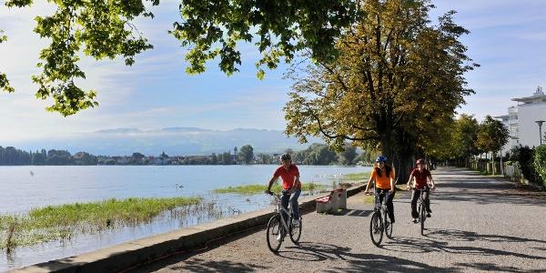 Entlang des Bodensees hat man auf der Rheinroute das kühle Nass stets im Blick.