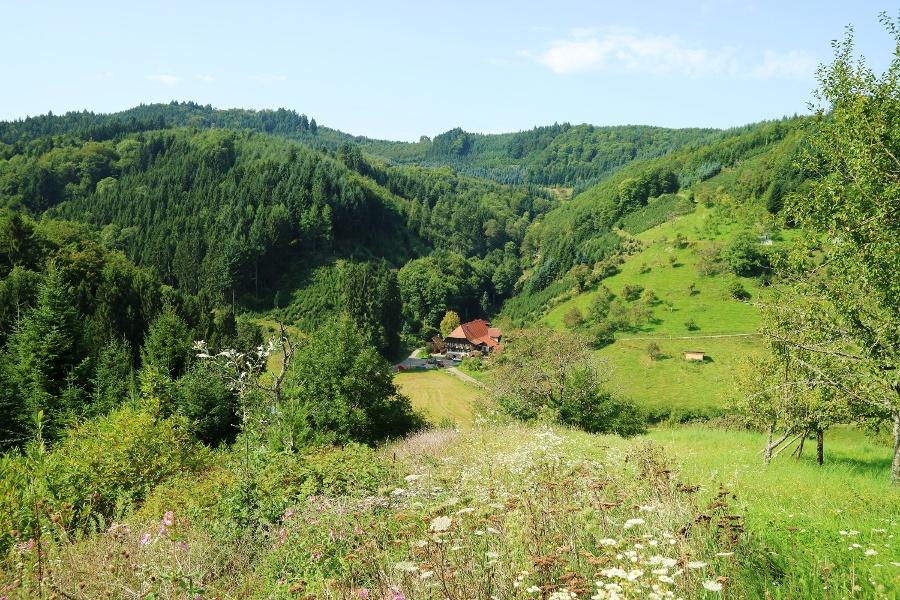 Gebirger Höfe-Weg