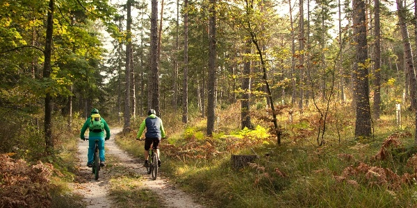 Zufahrt Kopein Trail