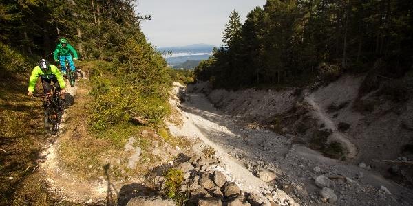 Kopein Trail