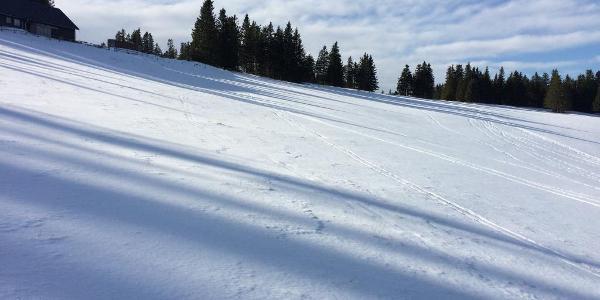 Weg zum Hochwechsel: Kranichberger Schwaig