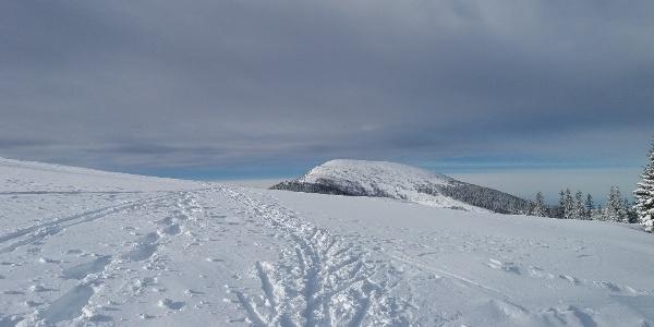 Kurze Schneeschuhrunde auf der Stubalm_Blick auf den Rappold