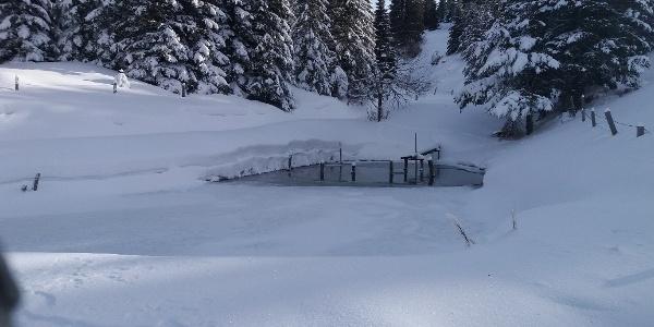 Kurze Schneeschuhrunde auf der Stubalm_Idyllischer Teich