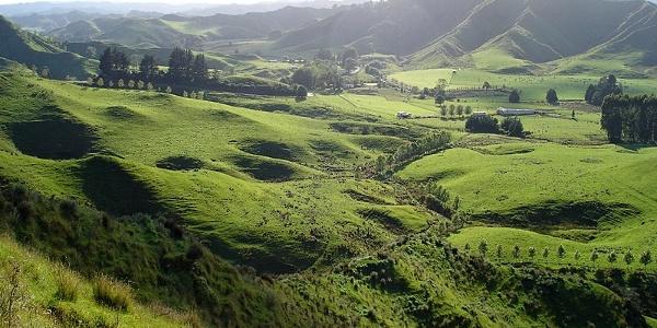 The hinterland of New Zealand