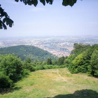 Aufstieg zum Königstuhl mit Blick auf das Rheintal
