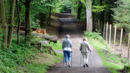Wanderweg entlang des Tiergartens