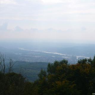 Ausblick von der Löwenburg