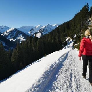 Auf dem Weg von der Bühlalpe nach Mittelberg