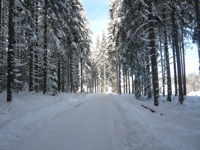 Winterwanderung zum Gasthaus Breitbrunnen