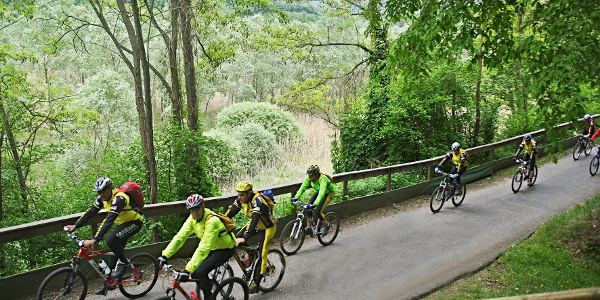 The cycle path near lake Loppio