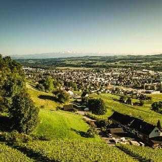 Diese Tour führt einem hoch über Weinfelden und das Thurtal.