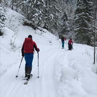 Wir folgen der frisch verschneiten Forststraße.