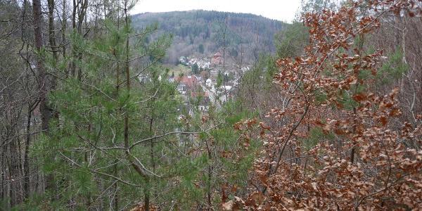 Blick von der unteren Weihersbergaussicht auf Elmstein