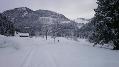 Auf der Rettenbach Alm