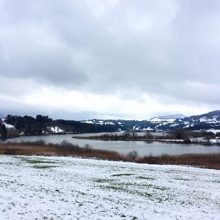Der Niedersonthofener See