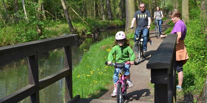 Die 10 schönsten Fahrrad-Touren im Spreewald