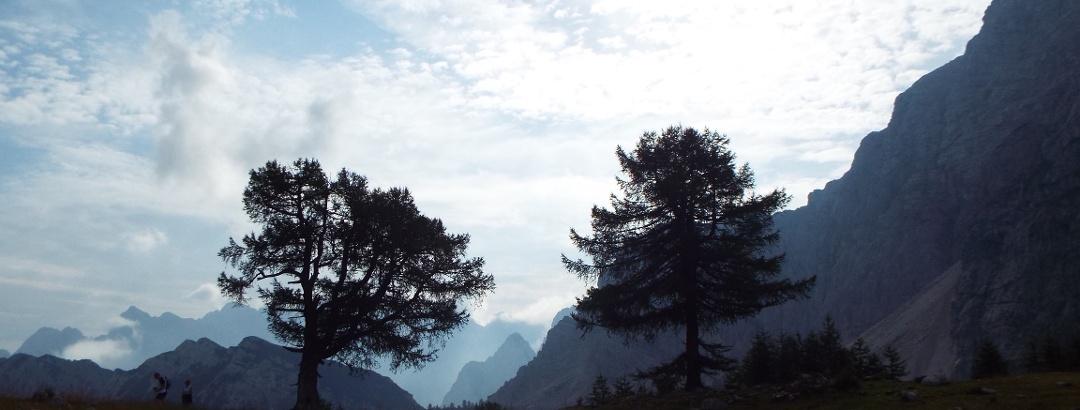 Karge Gebirgsmassive und saftige Weideflächen vor den Gipfeln von Sleme