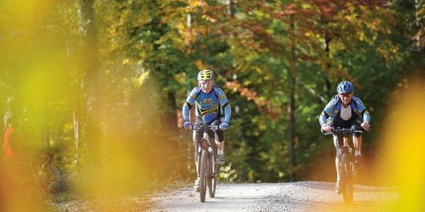 Die Route führt durch zwei ausgedehnte Waldstücke.