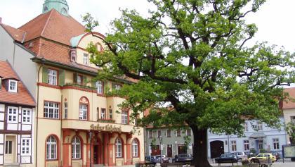 Die Altstadt von Kyritz mit der Friedenseiche.