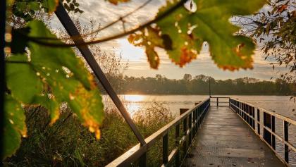 Bootssteg am Lehnitzsee