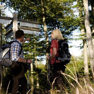 Wandererlebnis im Sauerland
