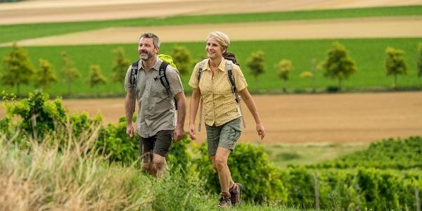 Wanderung in den Weinbergen