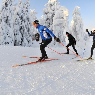 Cross-country skiers in Vuokatti