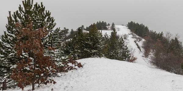 A Sziklás-hegy csúcsa innen nézve akár az Alacsony-Tátrában is lehetne