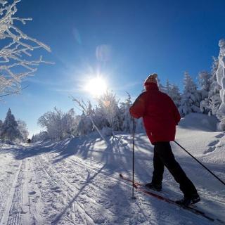 Langläufer auf Schneise 31