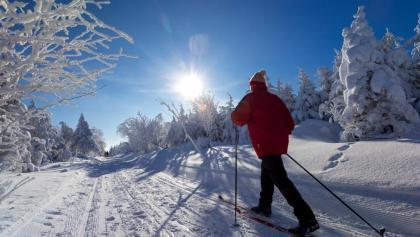 Skifahrer auf Schneise 31